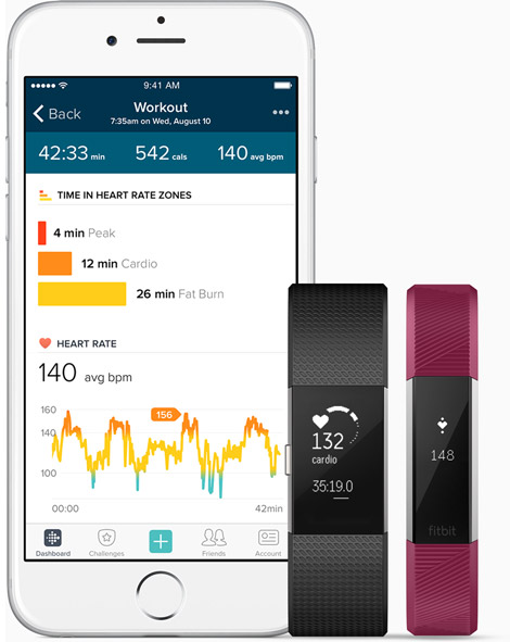 Fitbit results display
